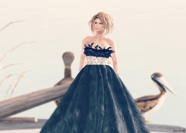 DD gown 2